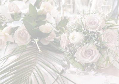 Bride-Header2