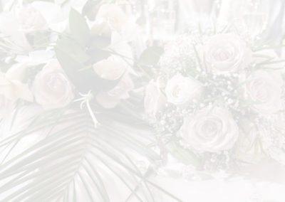 Bride-Header2a