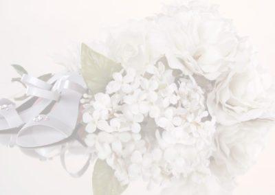 Bride-Header5